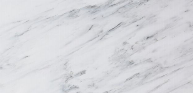 Carrara Elegant White